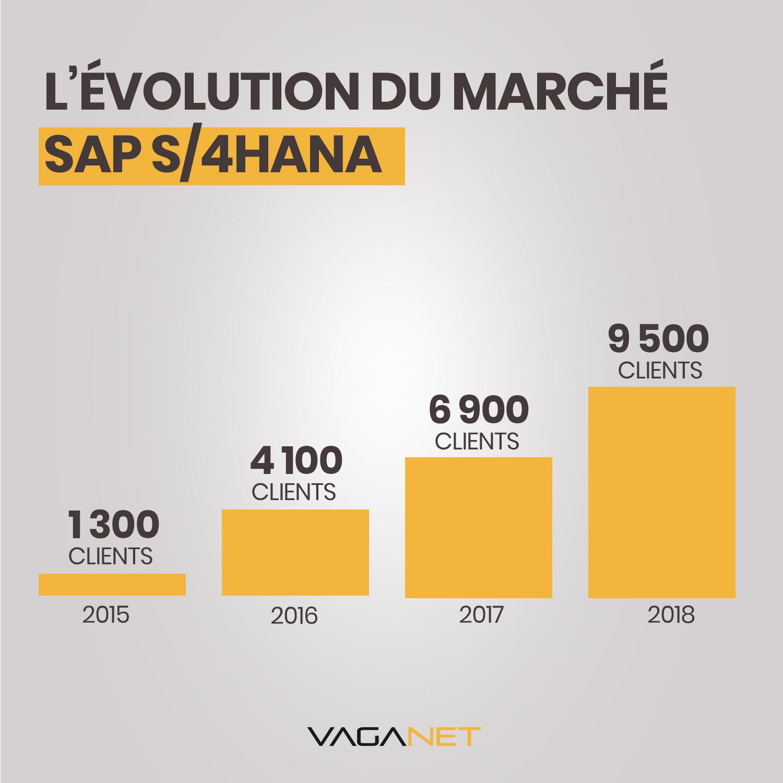 L'évolution du marché sap s/4hana